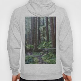 Forest Unknown Hoody