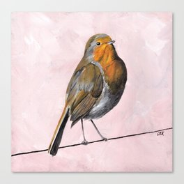 Robin Redbreast, Orange Bird Art Canvas Print
