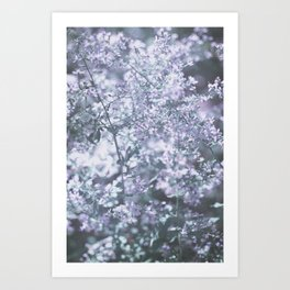Bright Sight Art Print