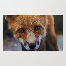 Cute Fox (Color) Rug