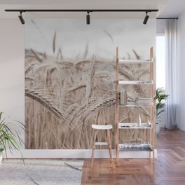 Fields of Gold Wall Mural