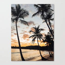 Sunset Through the Palm Trees Canvas Print