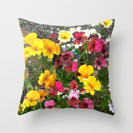 Colorful Nemesia Throw Pillow