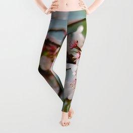 Bloom Bloom Bloom Leggings