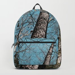 Twin Towers Backpack