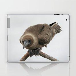 Curious young boobie Laptop & iPad Skin