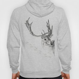 Winter Stag Hoody