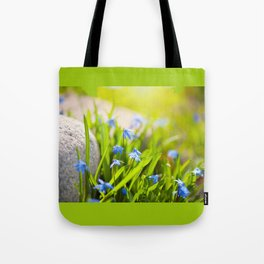 Scilla siberica flowerets named wood squill Tote Bag
