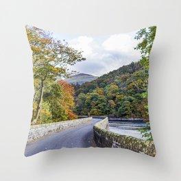 Follow the Road. Throw Pillow