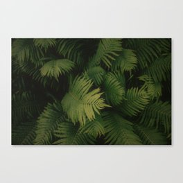 Nature Leaves Canvas Print