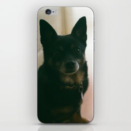 Lucie and Charlie iPhone Skin