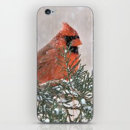 Snowfall Cardinal iPhone Skin