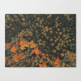 Autumn Passage Canvas Print