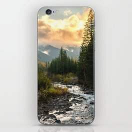 The Sandy River I - nature photography iPhone Skin