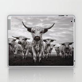 Highland Cattle Mixed Breed Mono Laptop & iPad Skin