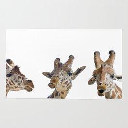 digital painting of giraffe portrait isolated on white background Rug