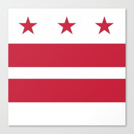 Washington D.C.: Washington D.C. Flag Canvas Print