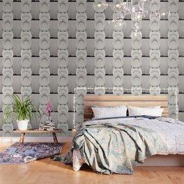 Water closet dirty Wallpaper