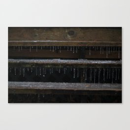 Ice on Stairs Canvas Print