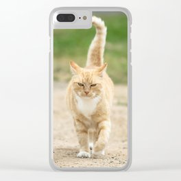 Ginger Cat Walking Clear iPhone Case