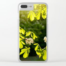 Flowering Aesculus horse chestnut foliage Clear iPhone Case