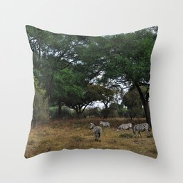 Zebras. Throw Pillow