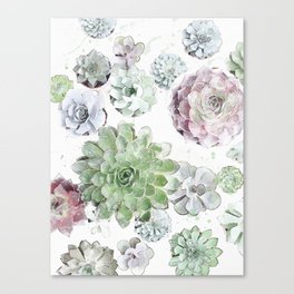 Original Succulent Print #society6 #decor #buyart Canvas Print