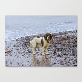 after swimming Canvas Print