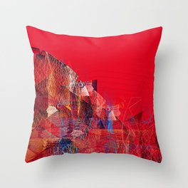 11617 Throw Pillow