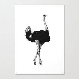Ostrich Ballerina Canvas Print