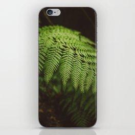 Australian Coast Fern iPhone Skin