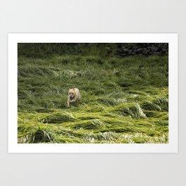 Happiness is Running Through a Field of Grass Art Print