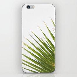 Tropical Palm Green Plant Leaf Minimalist Modern Photo iPhone Skin
