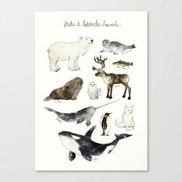 Arctic & Antarctic Animals Canvas Print