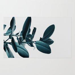 Ficus Rug