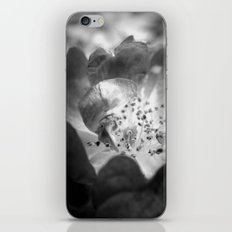 Light Comes From Within iPhone & iPod Skin