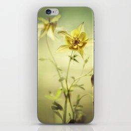 Yellow Columbines iPhone Skin