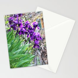Purple Flowers, Chinque Terre, Italy Stationery Cards