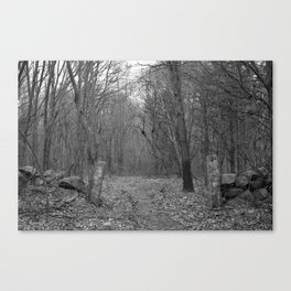 Another Winter Gone Canvas Print