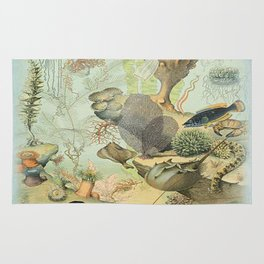 SEA CREATURES COLLAGE, OCEAN ILLUSTRATION Rug
