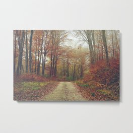 Fall again Metal Print