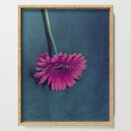 Gerbera for love Serving Tray