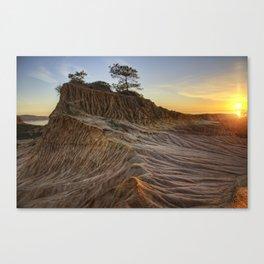 Torrey Pines Canvas Print