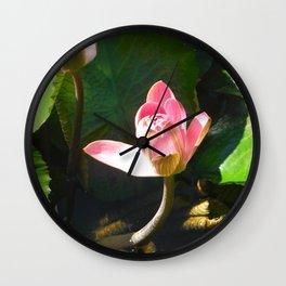 Hanalei Lotus, by Mandy Ramsey, Haines, AK Wall Clock