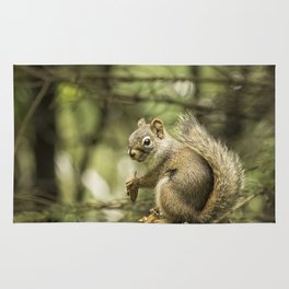 Who You Calling Squirrelly? Rug