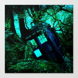during this tardis Canvas Print