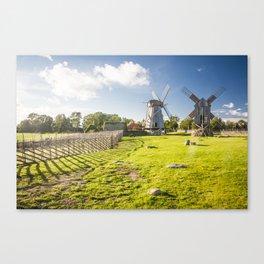 Saaremaa 1.6 Canvas Print