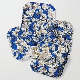 Spring Blossom V Coaster
