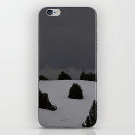 foggy landscape iPhone Skin
