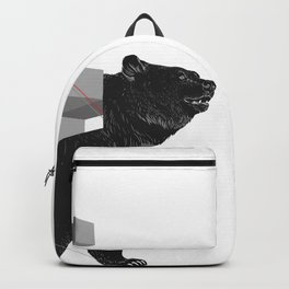 bear_deconstructed Backpack